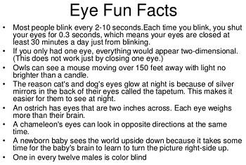 Amazing Eye, Facts About the Amazing Eye