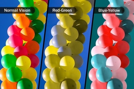 THE CAUSES OF COLOR BLINDNESS, THE CAUSES OF COLOR BLINDNESS